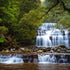 Downstream - Liffey Falls - The track to Liffey Falls is a short one, down hill and littered with stunning ferns and rainforest. It has 3 tiers and you...