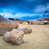 Three Rocks And A Tree - Binalong Bay - The orange and red lichen that covers the white granite rocks of the Bay of Fires are world re-known for its stunning...