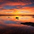 Sand Claws - Shorncliffe - New Year's Day 2009 was welcomed with a stunning sunrise over Shorncliffe just north of Brisbane. The water reflected the sky...