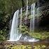 Russell Falls I - Mt Field National Park