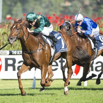 Capitalist-ShinnBlake-03192016-5771 - SYDNEY, Australia:  CAPITALIST (Written Tycoon - Kitalpha) wins the G1 Longines Golden Slipper at Rosehill Gardens...