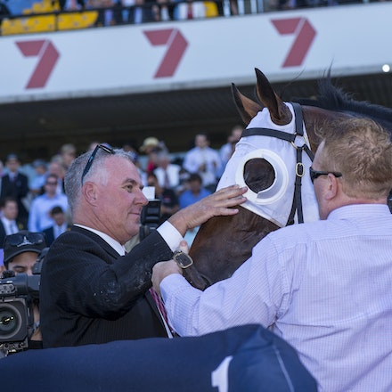 Tarzino-Connections-20160319-2774 - SYDNEY, Australia:   Tarzino wins the G1 Rosehill Guineas (2000m, set weights, 3 year olds) at Rosehill Gardens Racecourse...