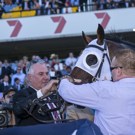 Tarzino-Connections-20160319-2775 - SYDNEY, Australia:   Tarzino wins the G1 Rosehill Guineas (2000m, set weights, 3 year olds) at Rosehill Gardens Racecourse...