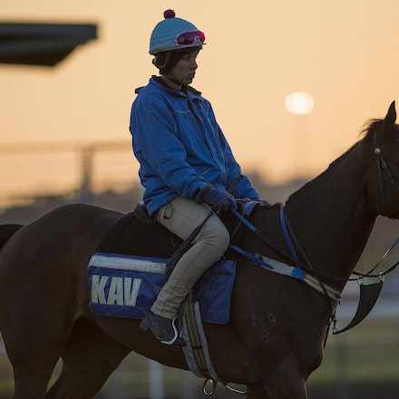 AtlanticJewel-10042013-3327 - The sun rises at Flemington Racecourse during morning trackwork during the Spring Racing Carnival.  Photo by Bronwen Healy.