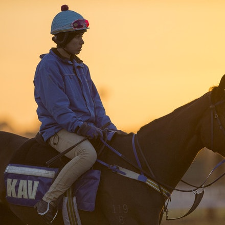 AtlanticJewel-10042013-3331 - The sun rises at Flemington Racecourse during morning trackwork during the Spring Racing Carnival.  Photo by Bronwen Healy.
