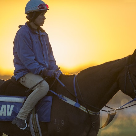 AtlanticJewel-10042013-3338 - The sun rises at Flemington Racecourse during morning trackwork during the Spring Racing Carnival.  Photo by Bronwen Healy.