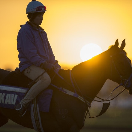AtlanticJewel-10042013-3335 - The sun rises at Flemington Racecourse during morning trackwork during the Spring Racing Carnival.  Photo by Bronwen Healy.