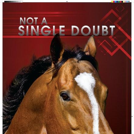 132745-NotASingleDoubt-Marquee-IHP-final