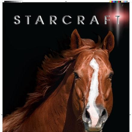 132749-Starcraft-Marquee-IHP-final