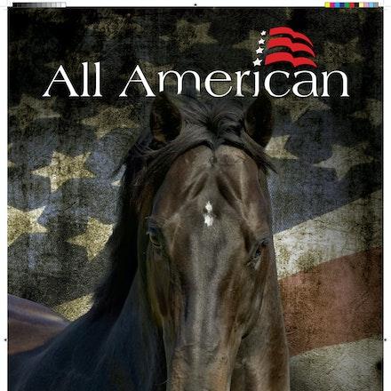 132507-AllAmerican-Marquee-IHP-final