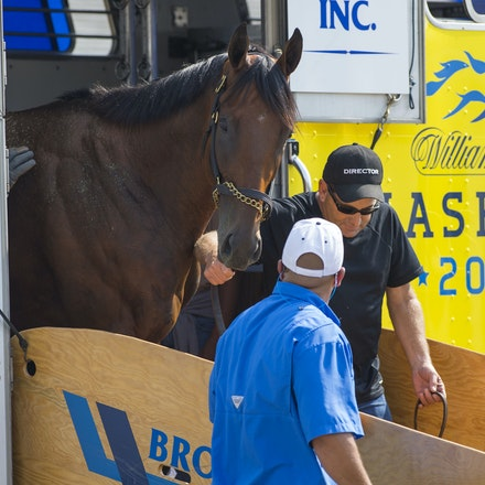 AmericanPharoah-07302015-1607 - 2015 Triple Crown Champion, American Pharoah arrives at Monmouth Park Racecourse to prepare for the 2015 Haskell Invitational...