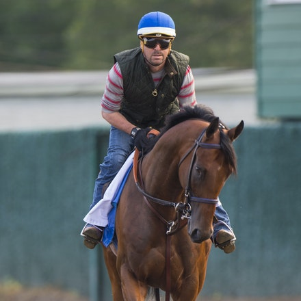 AmericanPharoah-07302015-2437 - State Troopers from New Jersey Police Department keep a watchful eye over 2015 Triple Crown Champion, American Pharoah....