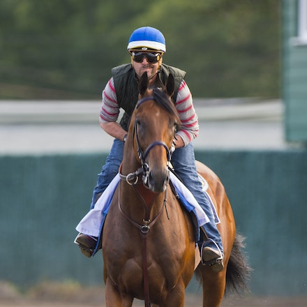 AmericanPharoah-07302015-2440 - State Troopers from New Jersey Police Department keep a watchful eye over 2015 Triple Crown Champion, American Pharoah....