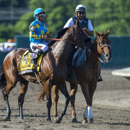 AmericanPharoah-EspinozaVictor-08022015-5825 - 2015 Triple Crown Champion, American Pharoah wins the G1 Haskell Invitational at Monmouth Park Racecourse...