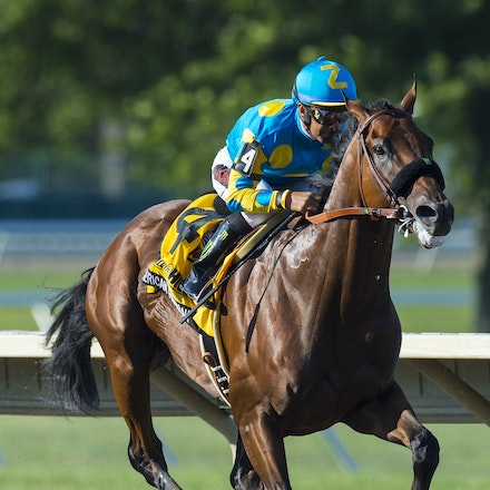 AmericanPharoah-EspinozaVictor-08022015-5999 - 2015 Triple Crown winner American Pharoah (Pioneerof The Nile - Littleprincessemma) wins the G1 Haskell...