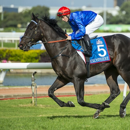 Exosphere-McDonaldJames-03212015-5709 - Exosphere (Lonhro - Altitude) canters to the barrier before the G1 Golden Slipper on 21 March 2015.  He was ridden...