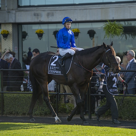 Exosphere-McDonaldJames-09122015-5894 - Exosphere (Lonhro - Altitude) wins the G1 Golden Rose on 12 September 2015.  He was ridden by James McDonald and...