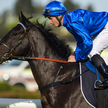 Exosphere-McDonaldJames-09122015-3322 - Exosphere (Lonhro - Altitude) wins the G1 Golden Rose on 12 September 2015.  He was ridden by James McDonald and...
