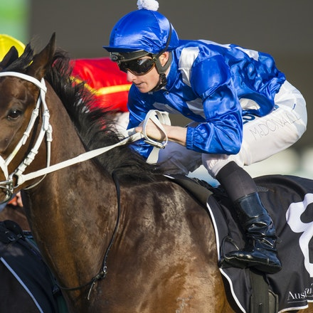 Winx-McDonaldJames-09122015-3774 - Winx (Street Cry - Vegas Showgirl) wins the G2 Theo Marks Stakes on 12 September 2015.  She was ridden by James McDonald...