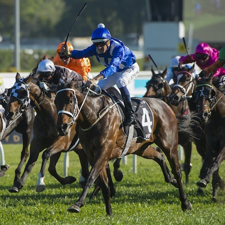 Winx-McDonaldJames-10032015-5364 - SYDNEY, AUSTRALIA. Winx (Street Cry - Vegas Showgirl) wins the G1 Epsom Handicap at Royal Randwick on 3 October 2015....