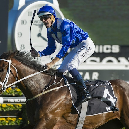 Winx-McDonaldJames-10032015-5381 - SYDNEY, AUSTRALIA. Winx (Street Cry - Vegas Showgirl) wins the G1 Epsom Handicap at Royal Randwick on 3 October 2015....