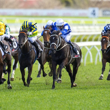 Kermadec-SchofieldGlyn-09192015-7268 - KERMADEC (Teofilo - Hy Fuji) wins the George Main Stakes (G1) at Royal Randwick on 19 September 2015.   Ridden by...