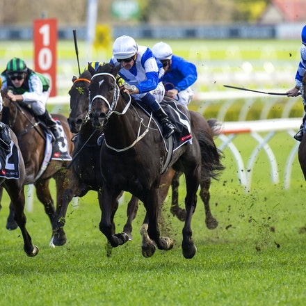 Kermadec-SchofieldGlyn-09192015-7273 - KERMADEC (Teofilo - Hy Fuji) wins the George Main Stakes (G1) at Royal Randwick on 19 September 2015.   Ridden by...