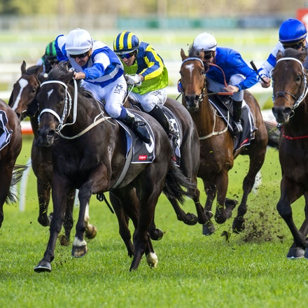 Kermadec-SchofieldGlyn-09192015-7279 - KERMADEC (Teofilo - Hy Fuji) wins the George Main Stakes (G1) at Royal Randwick on 19 September 2015.   Ridden by...