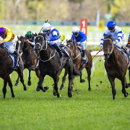 Kermadec-SchofieldGlyn-09192015-7277 - KERMADEC (Teofilo - Hy Fuji) wins the George Main Stakes (G1) at Royal Randwick on 19 September 2015.   Ridden by...