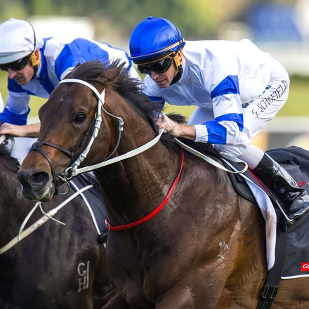 Kermadec-SchofieldGlyn-09192015-7296 - KERMADEC (Teofilo - Hy Fuji) wins the George Main Stakes (G1) at Royal Randwick on 19 September 2015.   Ridden by...