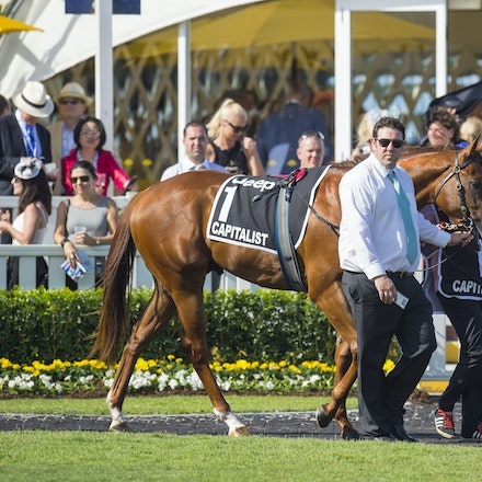 Capitalist-01092016-1345 - CAPITALIST (Written Tycoon - Kitalpha), wins the Magic Millions 2yo Classic held at the Gold Coast Racecourse on 9 January 2016...