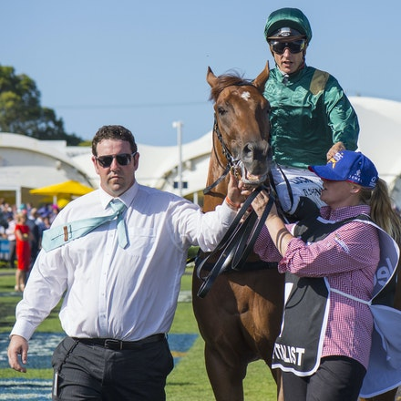 Capitalist-ShinnBlake-01092016-1750 - CAPITALIST (Written Tycoon - Kitalpha), wins the Magic Millions 2yo Classic held at the Gold Coast Racecourse on...