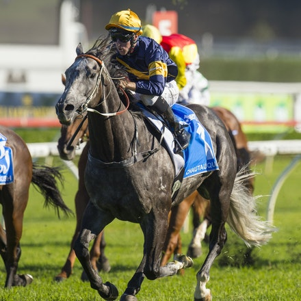 Chautauqua-BerryTommy-04022016-1516 - CHAUTAUQUA (Encosta de Lago - Lovely Jubly) wins the G1 TJ Smith Stakes for the 2nd successive year at Royal Randwick...