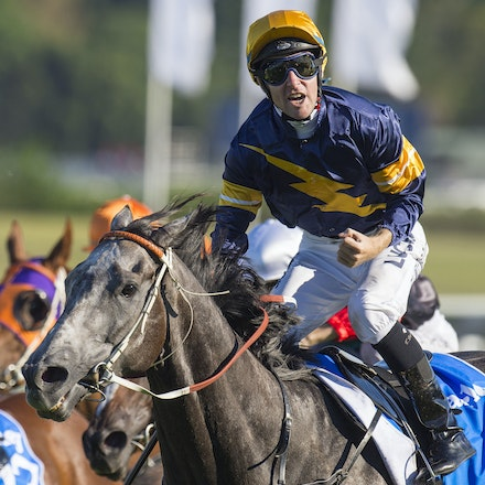 Chautauqua-BerryTommy-04022016-1525_1 - CHAUTAUQUA (Encosta de Lago - Lovely Jubly) wins the G1 TJ Smith Stakes for the 2nd successive year at Royal Randwick...