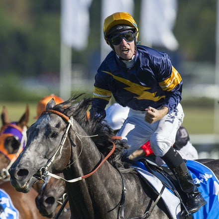 Chautauqua-BerryTommy-04022016-1525 - CHAUTAUQUA (Encosta de Lago - Lovely Jubly) wins the G1 TJ Smith Stakes for the 2nd successive year at Royal Randwick...