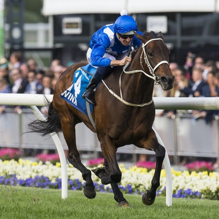 Winx-BowmanHugh-10242015-7600 - Winx (Street Cry - Vegas Showgirl) wins the G1 WS Cox Plate on 24 October 2015.  She was ridden by Hugh Bowman and trained...