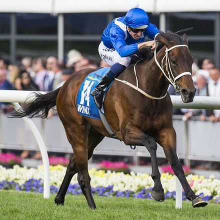 Winx-BowmanHugh-10242015-7605 - Winx (Street Cry - Vegas Showgirl) wins the G1 WS Cox Plate on 24 October 2015.  She was ridden by Hugh Bowman and trained...