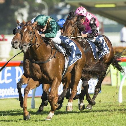 Capitalist-Shinn Blake-20160319_DDD5758 - SYDNEY, AUSTRALIA. 19 March 2015 Capitalist ridden by Blake Shinn wins the Longines Golden Slipper (G1) at Rosehill...