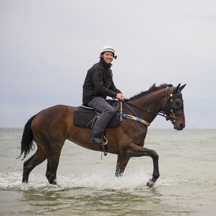 Winx-CaddenBen-10052016-0946 - WINX (Street Cry - Vegas Showgirl) visits the beach on Sunday 9 October 2016 after winning her 12th successive race, the...