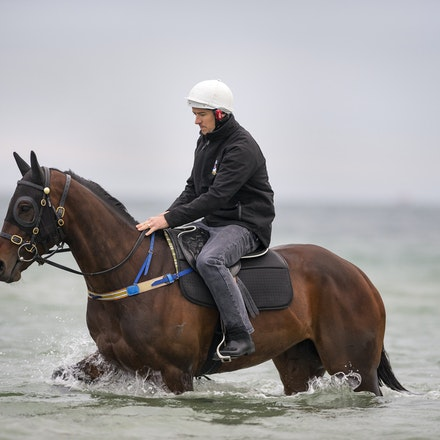 20161009:  Winx at Altona Beach - These images, shot exclusively, were the very first images captured of the champion racehorse Winx at the beach.  The...