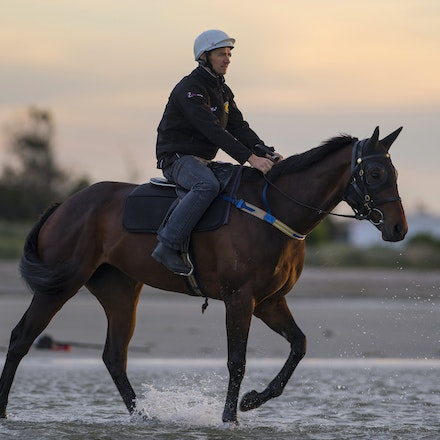 Winx-CaddenBen-10162016-5658 - WINX (Street Cry - Vegas Showgirl) at Altona Beach on Sunday 16 October 2016.  Trained by Chris Waller.  Ridden by Ben Cadden....