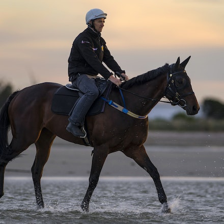 Winx-CaddenBen-10162016-5660 - WINX (Street Cry - Vegas Showgirl) at Altona Beach on Sunday 16 October 2016.  Trained by Chris Waller.  Ridden by Ben Cadden....