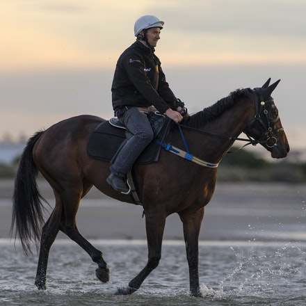 Winx-CaddenBen-10162016-5669 - WINX (Street Cry - Vegas Showgirl) at Altona Beach on Sunday 16 October 2016.  Trained by Chris Waller.  Ridden by Ben Cadden....
