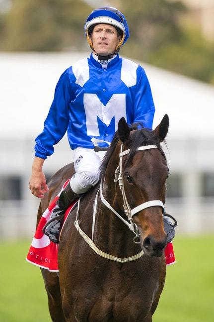 Winx-BowmanHugh-09172016-2356 - WINX (Street Cry - Vegas Showgirl) wins Race 6, the WFA G1 George Main Stakes over 2000m on George Main Stakes Day at Royal...