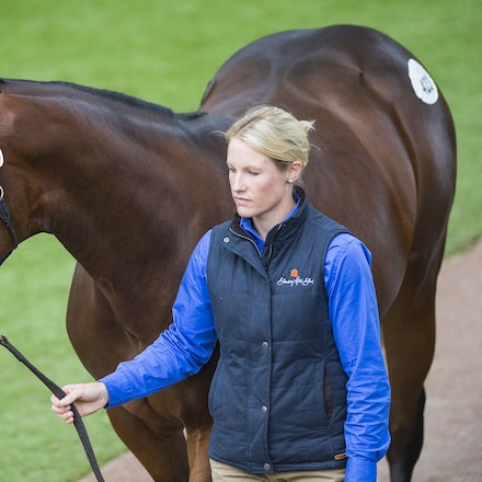 2016 Easter Day 3 - Day 3 of the Inglis Easter Yearling Sale was highlighted by Lot 433 (Redoute's Choice-National Colour) who sold for $1.75m and Lot...