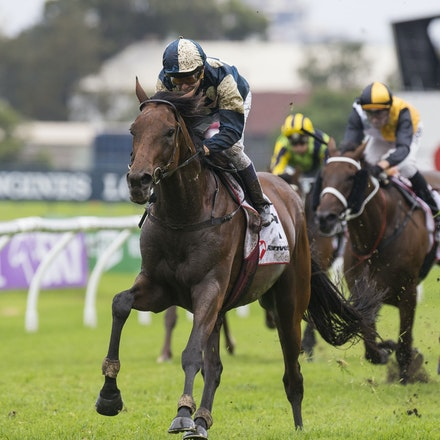 OurIvanhowe-McEvoyKerrin-03182017-6697 - OUR IVANHOWE (Soldier Hollow - Indigo Girl) wins Race 4, the G1 Ranvet Stakes.  Trained by Lee and Anthony Freedman....