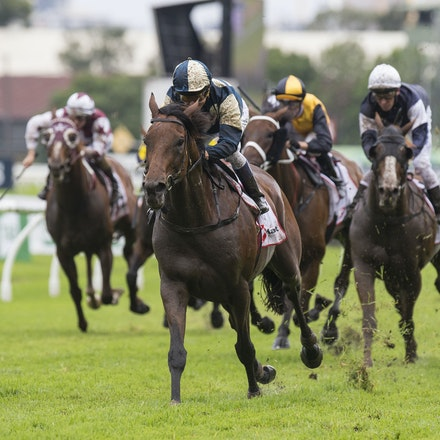 OurIvanhowe-McEvoyKerrin-03182017-6693 - OUR IVANHOWE (Soldier Hollow - Indigo Girl) wins Race 4, the G1 Ranvet Stakes.  Trained by Lee and Anthony Freedman....