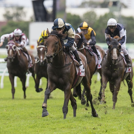 OurIvanhowe-McEvoyKerrin-03182017-6692 - OUR IVANHOWE (Soldier Hollow - Indigo Girl) wins Race 4, the G1 Ranvet Stakes.  Trained by Lee and Anthony Freedman....