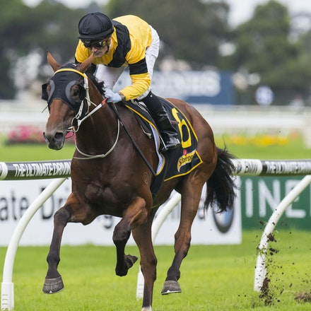 TheMission-BrownCorey-03252017-0653 - THE MISSION (Choisir - My Amelia) wins Race 1, the G3 Ballieu Stakes.  Trained by Paul Perry.  Ridden by Corey Brown....