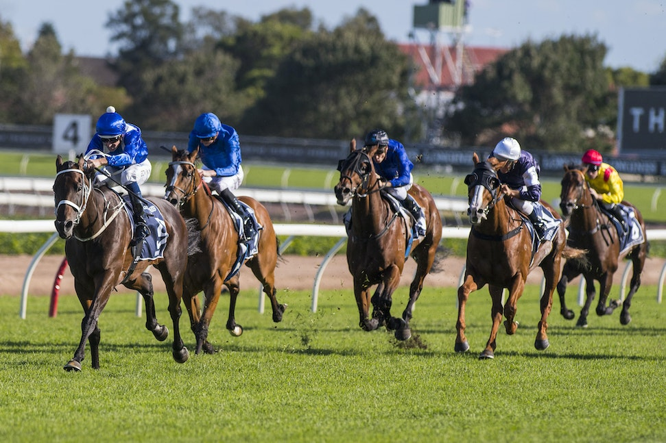 Winx-BowmanHugh-04082017-7725 - Photo - Bronwen Healy.  The Image is Everything - Bronwen Healy and Darren Tindale Photography.